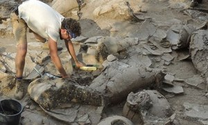 Archaeologist Zach Dunseth removes debris from ancient wine jars excavated in Israel